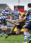 rugby-plabennec-15